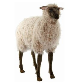 Hansa Hansa Gentle Ewe Sheep