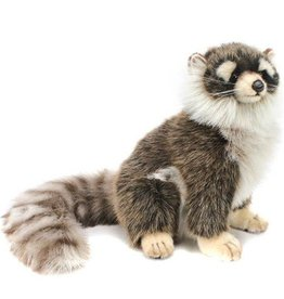 Hansa Hansa Young Raccoon