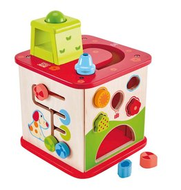 Hape Toys Friendship Activity Cube
