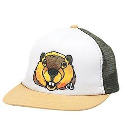 Ambler Beaver Baseball Hat