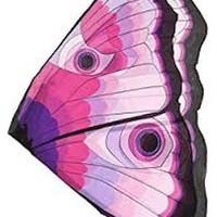 DOUGLAS CO. DREAMY DRESS UP PINK BUTTERFLY SET