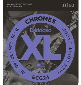 D'Addario ECG24