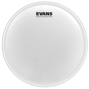 "Evans - UV1 Coated, 10"""