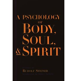 Steiner Books A Psychology Of Body Soul And Spirit: Anthroposophy Psychosophy Pneumatosophy (CW115)