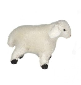 Gluckskafer Lamb