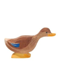 Ostheimer Duck long neck