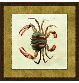 Wendover Art Group Crab II on Burlap w Honey Walnut Frame 26x26