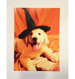 Halloween Card 15608HH Witch Way To The Treats by Avanti