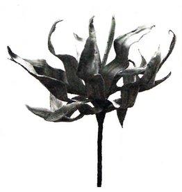 Kalalou Flowers | Florals CLX1316  Botanica Stem 97