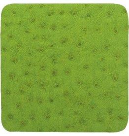 Caspari Coasters Felt Backed 88908CC Ostrich - Green Coaster Set