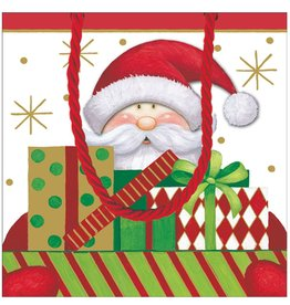 Caspari Santa W Packages Christmas Gift Bag SM 9633B1.5