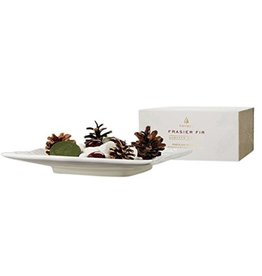 Thymes Frasier Fir Porcelain Potpourri Holder w Potpourri and Oil