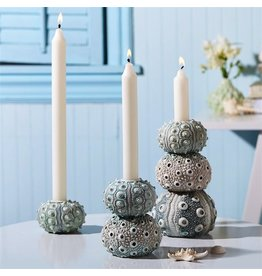Twos Company Sea Urchin Taper Candle Holder Set of 3 51499 by Twos Company