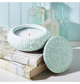 Twos Company Ceramic Sea Urchin w Lid Filled Candle
