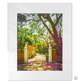 Maureen Terrien Photography Art Print Bonnet House Entrance 11x14 - 8x10 Matted
