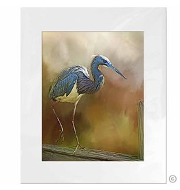 Maureen Terrien Photography Art Print Heron on fence 11x14 - 8x10 Matted