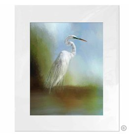 Maureen Terrien Photography Art Print Egret portrait 11x14 - 8x10 Matted