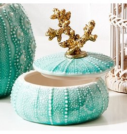 Twos Company Decorative Seafoam Sea Urchin Jar 4x3.75 inch