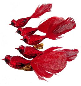 Kurt Adler Red Birds w Feather Glass Clip Christmas Ornaments Set of 5