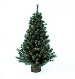 Kurt Adler Christmas Tree 18 Inch Mini Pine Tree on Round Wooden Base