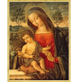 Caspari Boxed Christmas Cards 16pk Madonna and Child