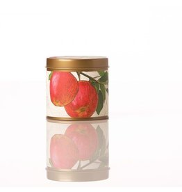 Rosy Rings Soy Candle Tin Spicy Apple Candle 8oz