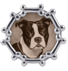 Mariposa Mariposa Photo Frame Dog Bone Round Frame 4x6 Photo 1407
