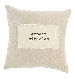 Mud Pie Positive Sentiment Pocket Pillow 9x9 w Expect Miracles