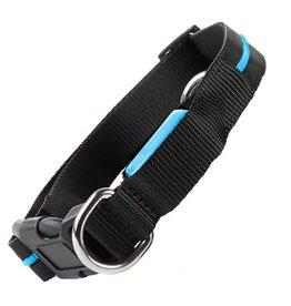 Twos Company Flashy Fido LED LIght Up Dog Collar w Blue LED