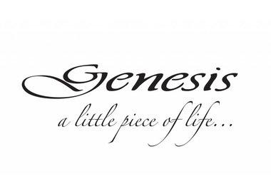 Genesis Fine Arts