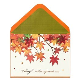 Papyrus Greetings Thanksgiving Card Fall Foilage Miles Seperate Us