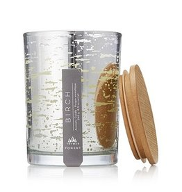 Thymes Forest Birch Candle 8.5oz Poured Candle