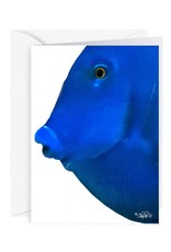 Charles W Blank Note Card - Cash - Gift Card Holder - Blue Fish I