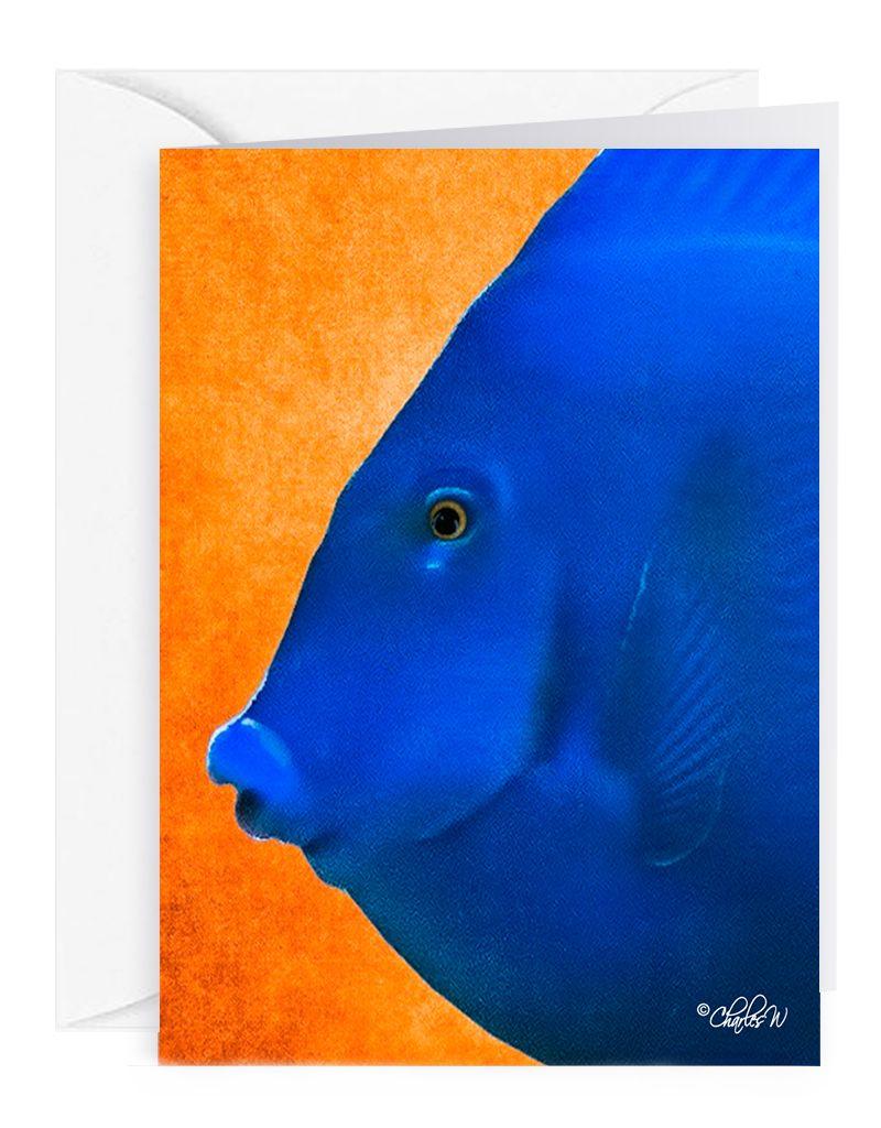 Charles W Blank Note Card - Cash - Gift Card Holder - Blue Fish III