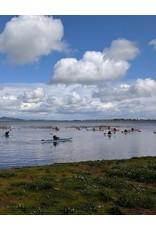Oregon Paddle Sports Basic Strokes with Kurt Renner