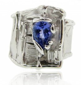 Motion Tanzanite Diamond Silver Ring, Silk