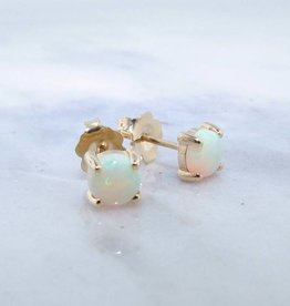 Sleek AAA Opal Yellow Gold Stud Earrings