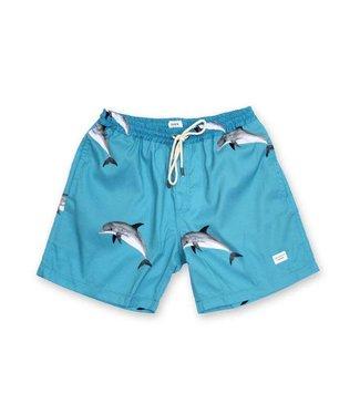 "Duvin Design Co. Dolfun 16"" Turquoise Boardshorts"