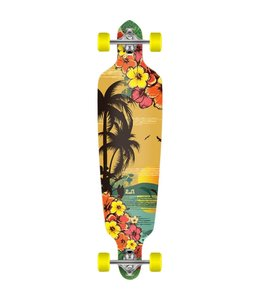 Palisades Skate Tropical Drop-Down 9 x 41.25 Complete