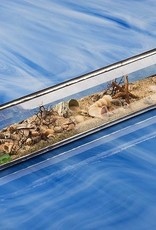 "Rare Earth Gallery Beach Kaleidoscopes (2""x10""Tent)"