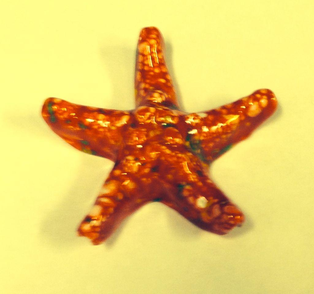 Rare Earth Gallery Starfish (Mini)