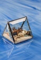 "Rare Earth Gallery Beach Kaleidoscopes (2""x2""Tent)"