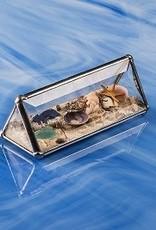 "Rare Earth Gallery Beach Kaleidoscopes (2""x4""Tent)"