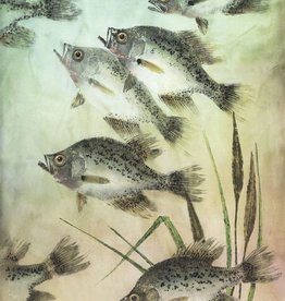 Ken Dara Speckled Perch (Gyotaku Giclee, 24x36, Framed, Signed)