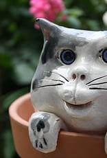 """Rare Earth Gallery Flower Pot Watcher (5.5""""SQ. x 2""""D)"""