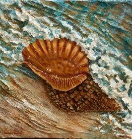 Carol Merritt Seashells (Set of 2, Original Acrylic, Signed, 12x12/each)