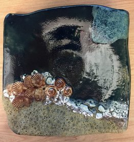 Rare Earth Gallery Plate (Shells)