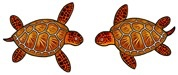 Rare Earth Gallery Earrings, Sea Turtle
