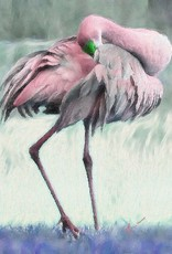 Donna Rydberg Not a Flamingo (Giclee on Canvas, 24x18)