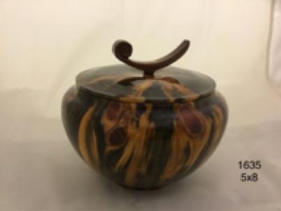 Joe Montagnino Box, Norfolk Island Pine, Curlicue Lid (#1635)